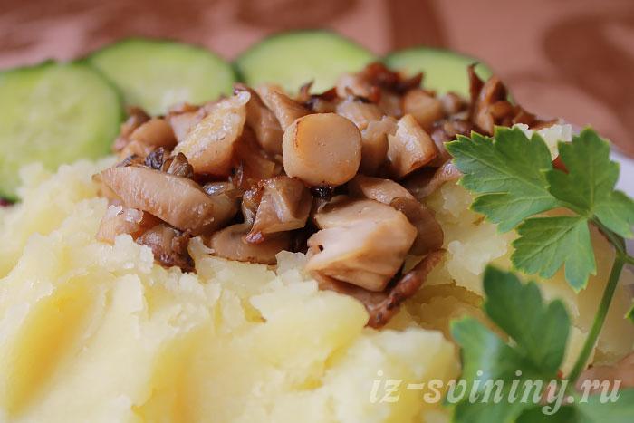 Свинина тушеная с грибами на картофельном пюре