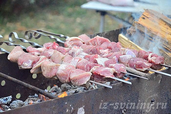 Шашлык из свинины над углями